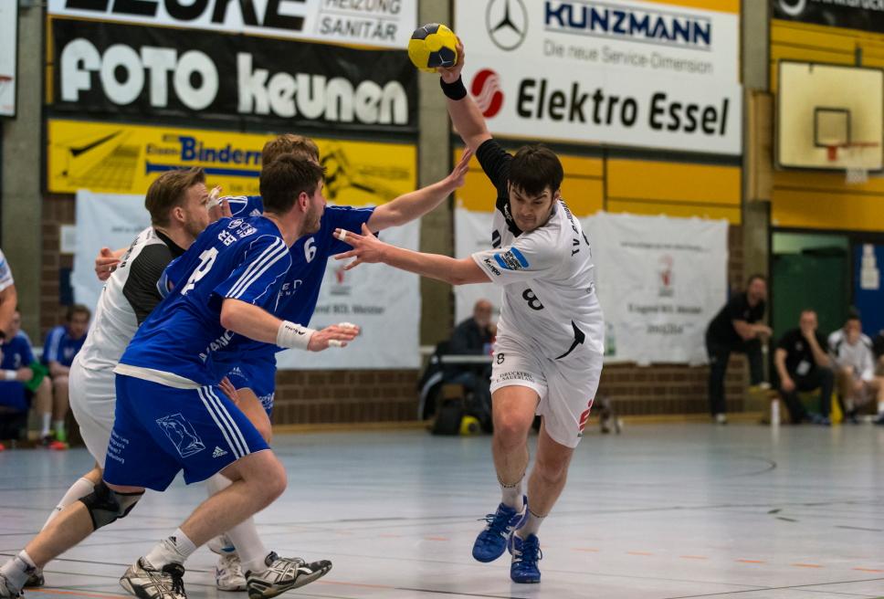 tvg handball